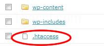 ロリポップ!htaccessファイル