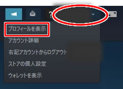 steamのプロフィールの変更方法